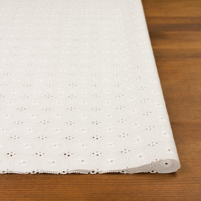 コットン×サークル(オフホワイト)×ローン刺繍 イメージ3