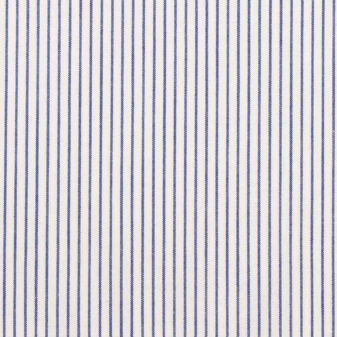 コットン×ストライプ(ネイビー)×ブロード イメージ1