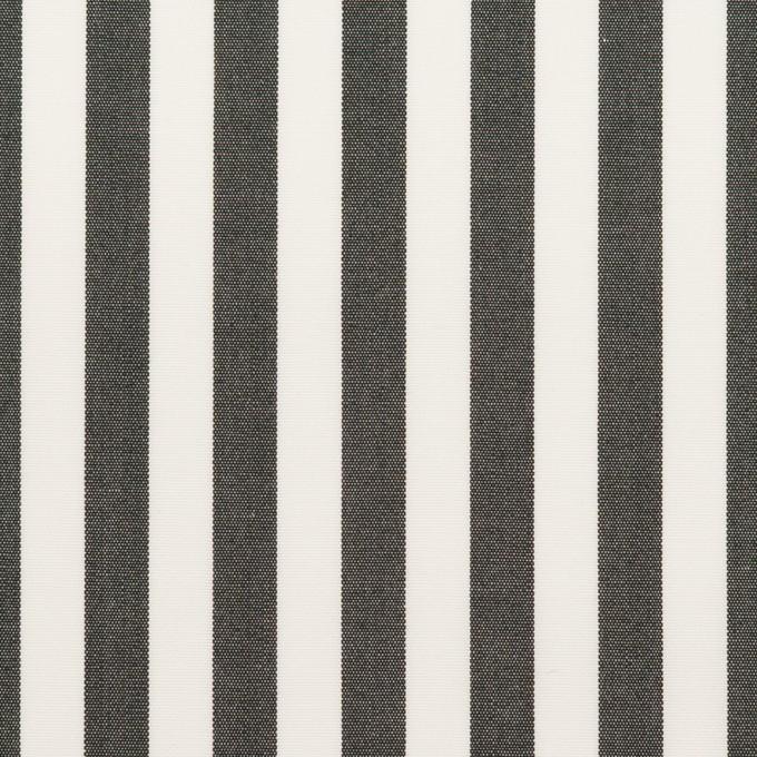コットン×ストライプ(チャコール)×ブロード_全3色 イメージ1