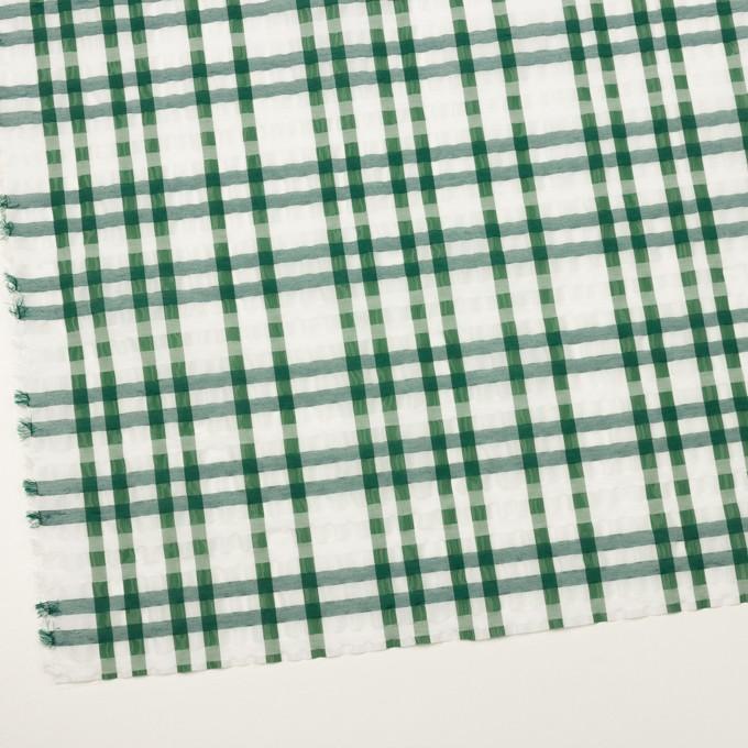 ポリエステル&ナイロン混×チェック(グリーン)×オーガンジー_イタリア製 イメージ2