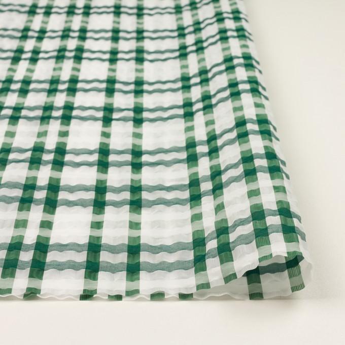 ポリエステル&ナイロン混×チェック(グリーン)×オーガンジー_イタリア製 イメージ3