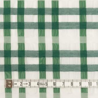 ポリエステル&ナイロン混×チェック(グリーン)×オーガンジー_イタリア製 サムネイル4