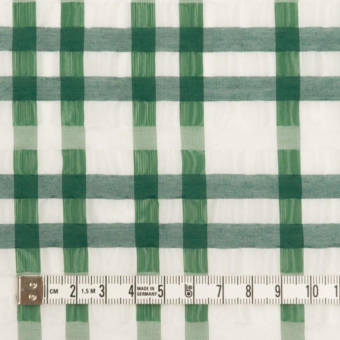 ポリエステル&ナイロン混×チェック(グリーン)×オーガンジー_イタリア製 イメージ4