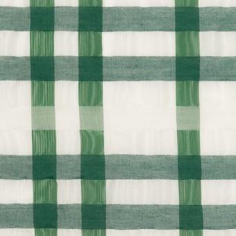 ポリエステル&ナイロン混×チェック(グリーン)×オーガンジー_イタリア製