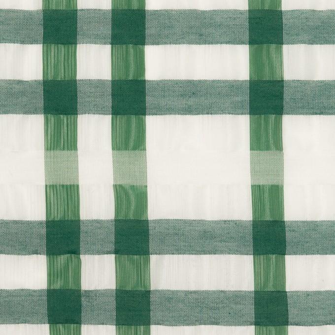 ポリエステル&ナイロン混×チェック(グリーン)×オーガンジー_イタリア製 イメージ1