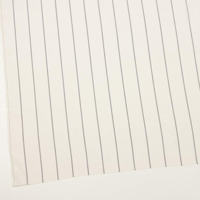 コットン&テンセル×ストライプ(エクリュ)×ローン_全2色 イメージ2