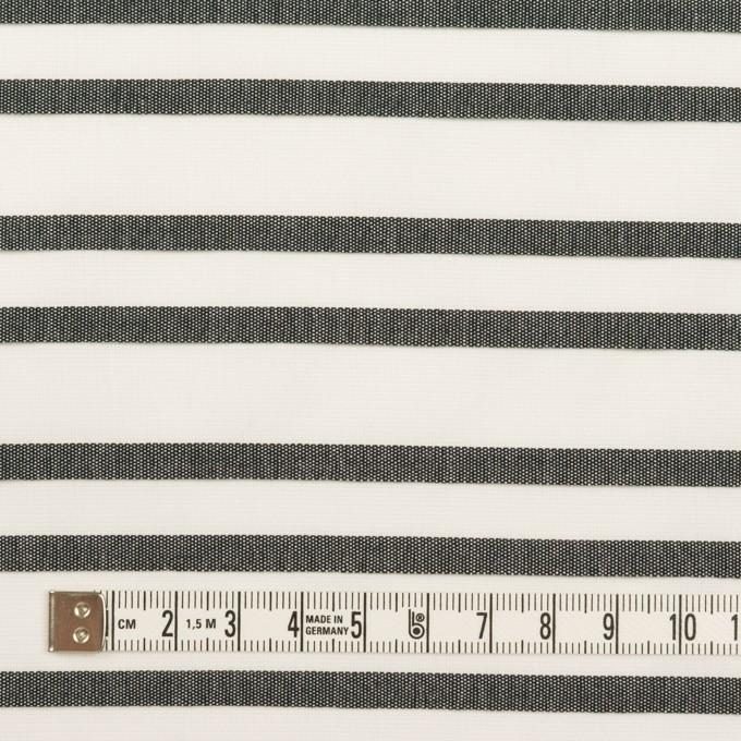 コットン×ボーダー(ホワイト&チャコール)×ピンタック イメージ4