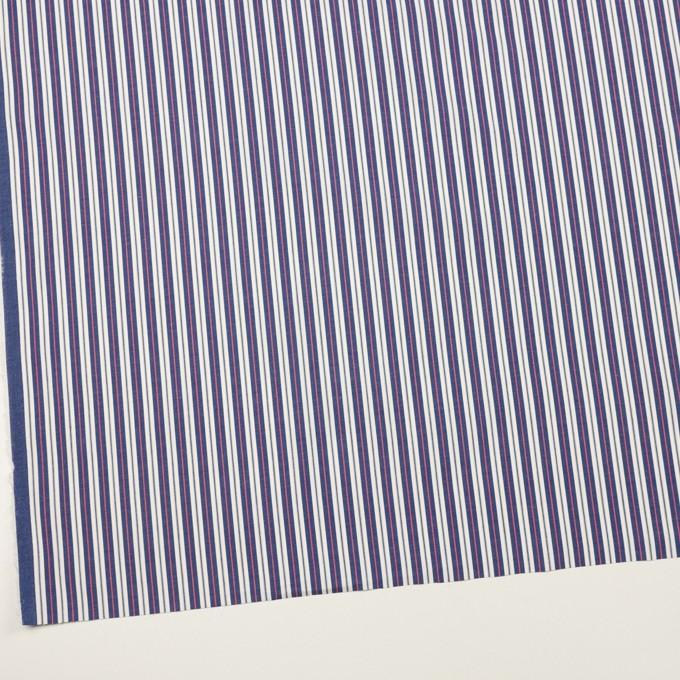 コットン×ストライプ(プルシアンブルー&ピンク)×ブロード イメージ2