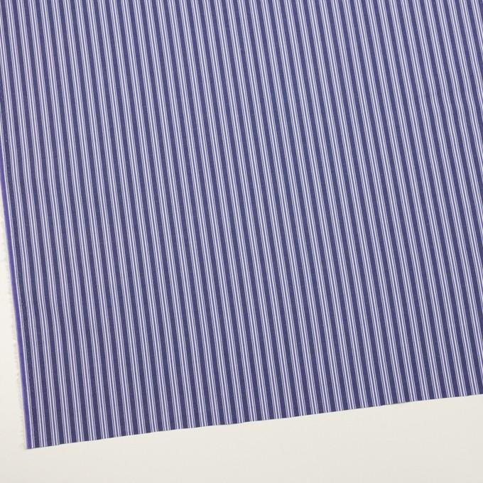 コットン×ストライプ(プルシアンブルー&グレープ)×ブロード イメージ2