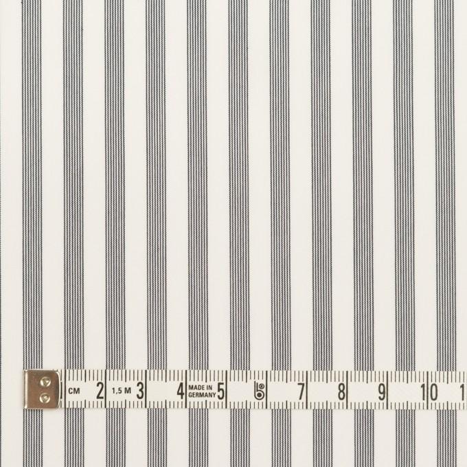 コットン&レーヨン×ストライプ(チャコール)×ブロード イメージ4