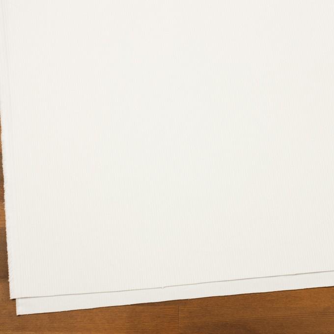 コットン×無地(ホワイト)×中コーデュロイ イメージ2