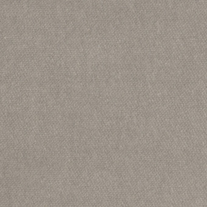 コットン&ポリウレタン×無地(ストーングレー)×ベルベット・ストレッチ イメージ1