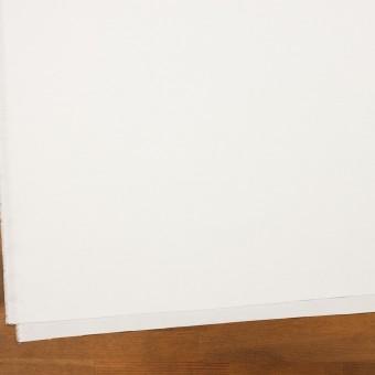 コットン×無地(オフホワイト)×斜子織 サムネイル2
