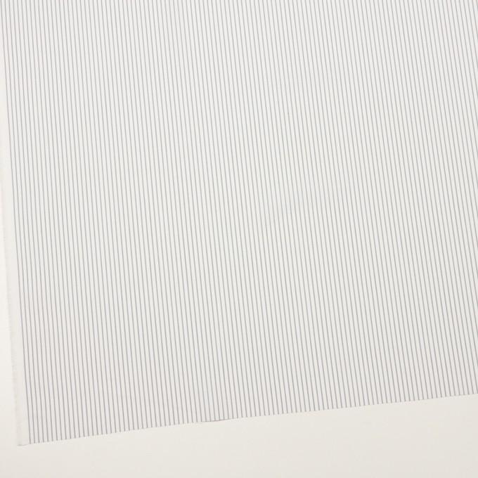 コットン×ストライプ(グレー)×ブロード_全4色 イメージ2