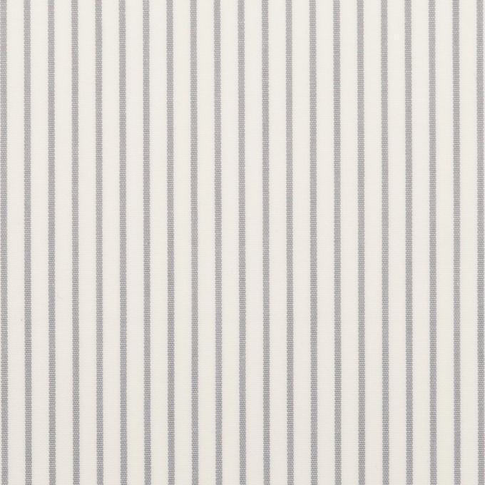 コットン×ストライプ(グレー)×ブロード_全4色 イメージ1