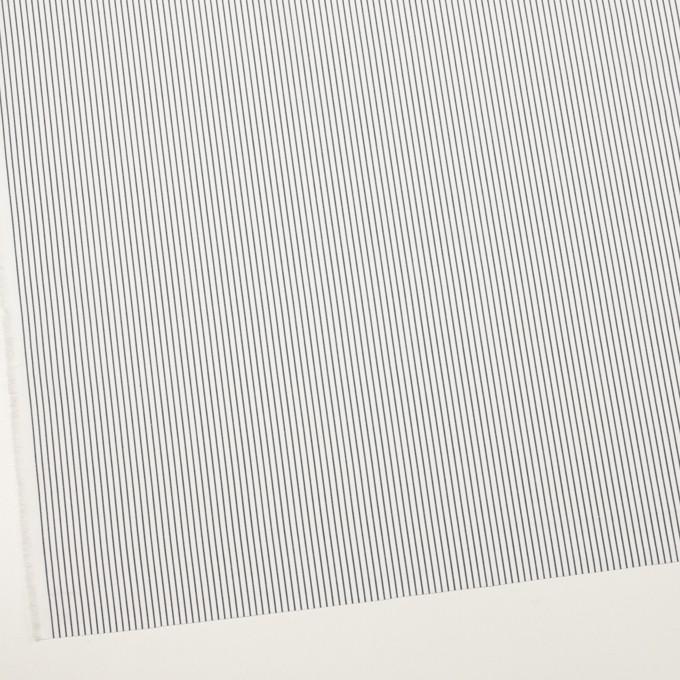 コットン×ストライプ(ネイビー)×ブロード_全4色 イメージ2