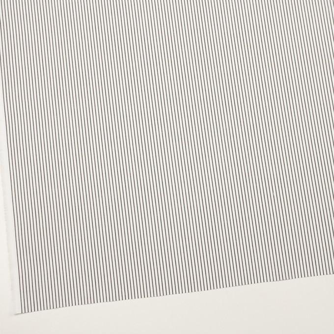 コットン×ストライプ(チャコール)×ブロード_全4色 イメージ2