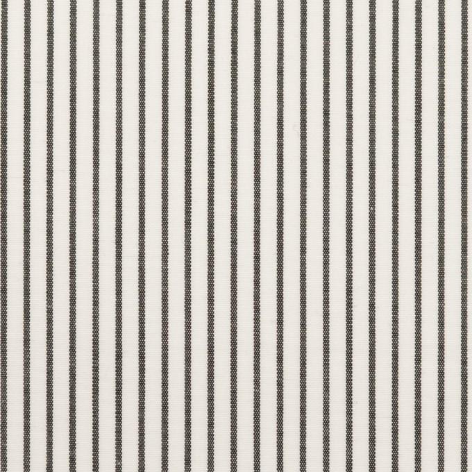 コットン×ストライプ(チャコール)×ブロード_全4色 イメージ1
