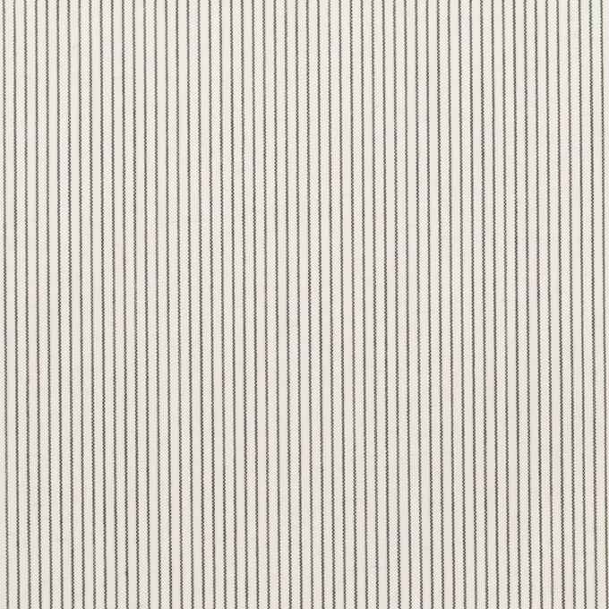 コットン×ストライプ(チャコール)×ローン_全2色 イメージ1