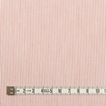 コットン×ストライプ(レッド)×ブロード_全2色 サムネイル4