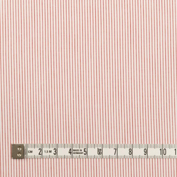 コットン×ストライプ(レッド)×ブロード_全2色 イメージ4