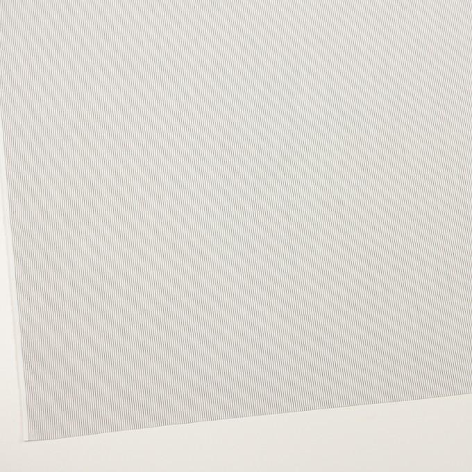 コットン×ストライプ(チャコール)×ブロード_全2色 イメージ2