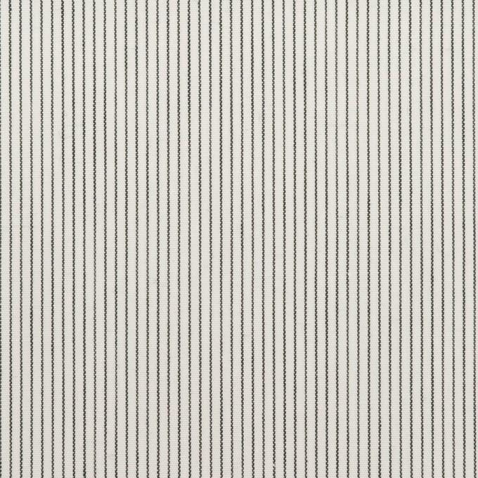 コットン×ストライプ(チャコール)×ブロード_全2色 イメージ1