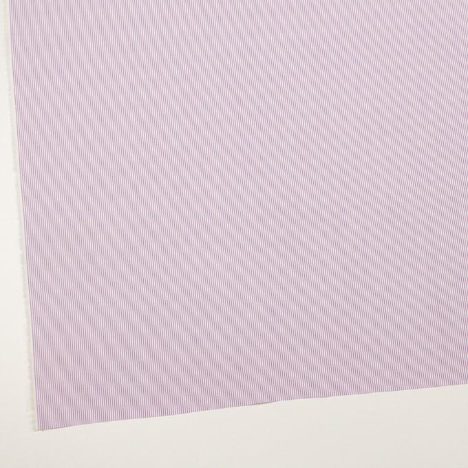 コットン×ストライプ(モーブ)×ブロード イメージ2
