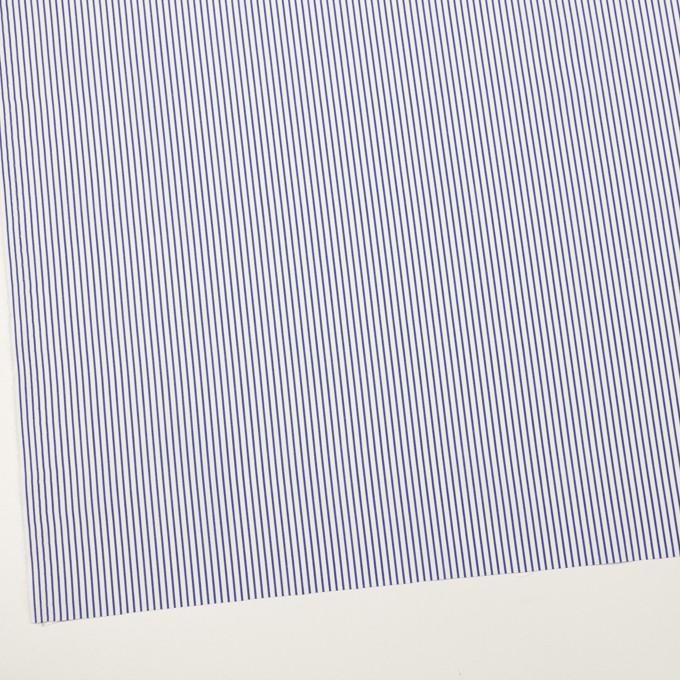 コットン×ストライプ(ブルー)×ブロード_全2色 イメージ2