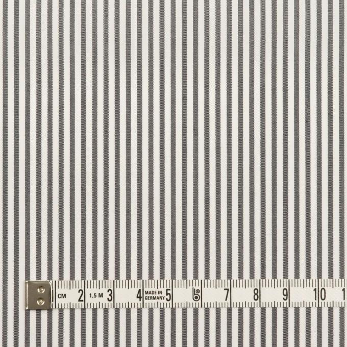 コットン&ポリエステル×ストライプ(チャコール)×ローン イメージ4