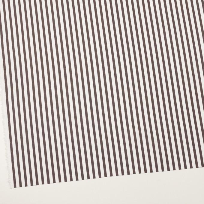 コットン×ストライプ(カーキブラウン)×ブロード_全2色 イメージ2