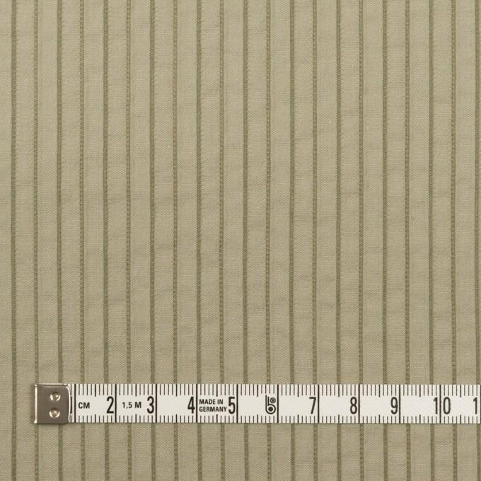 コットン&ナイロン混×ストライプ(アイビーグリーン)×タテタック イメージ4