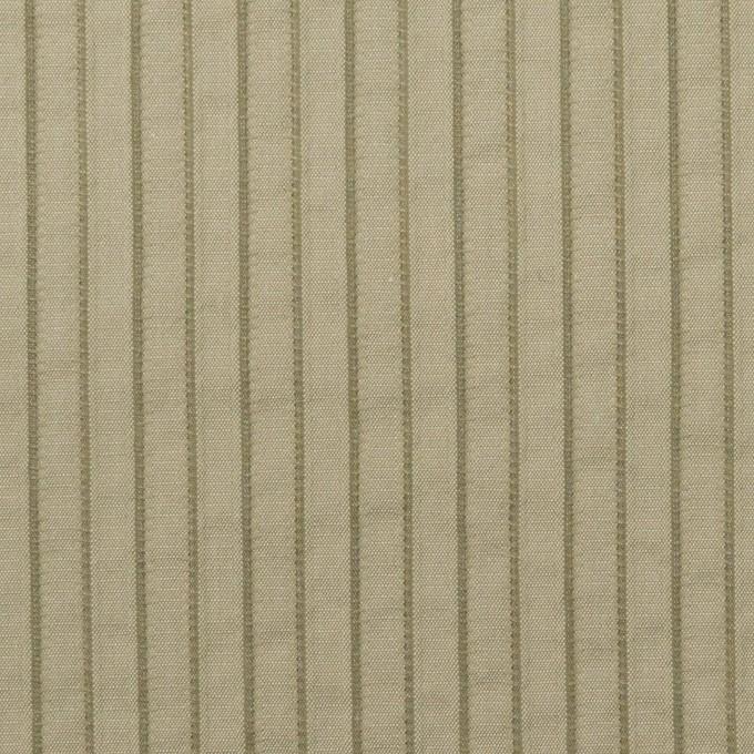 コットン&ナイロン混×ストライプ(アイビーグリーン)×タテタック イメージ1