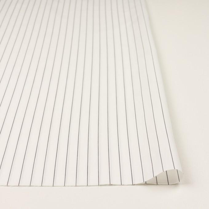 コットン×ストライプ(ホワイト)×ローン イメージ3