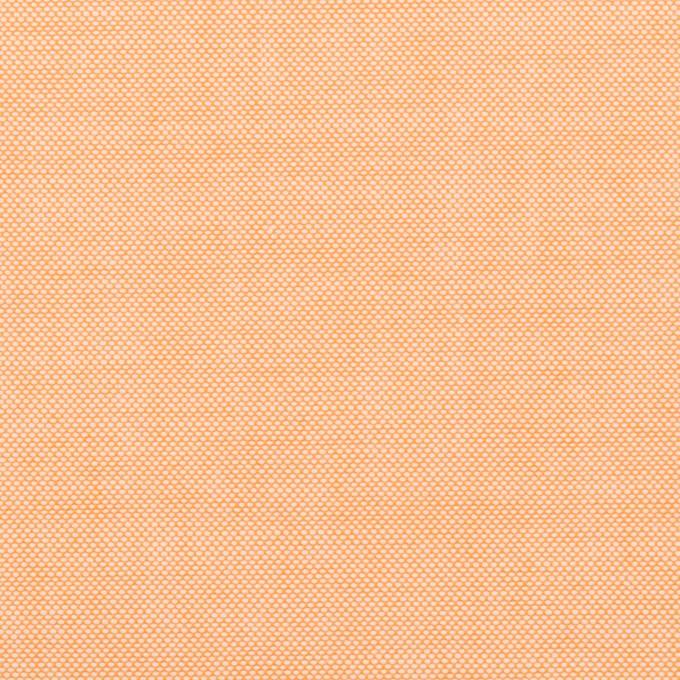 コットン×無地(オレンジ)×オックスフォード イメージ1