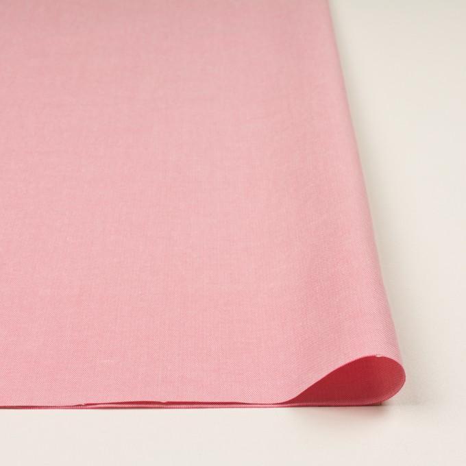 コットン×無地(ピンク)×セルビッチ・オックスフォード イメージ3