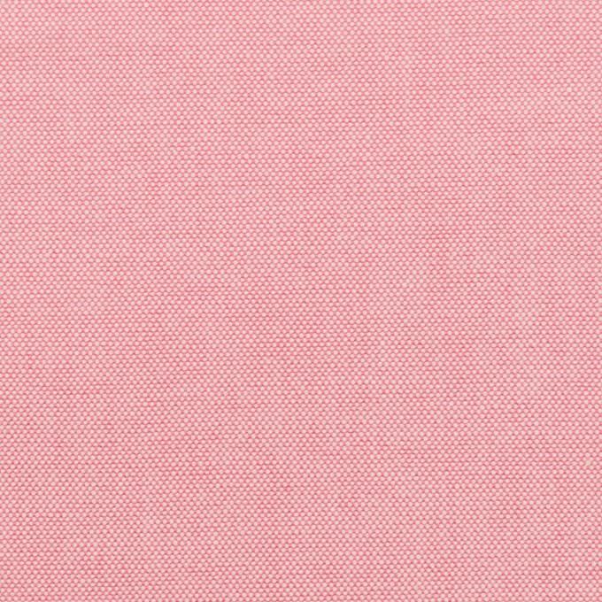 コットン×無地(ピンク)×セルビッチ・オックスフォード イメージ1