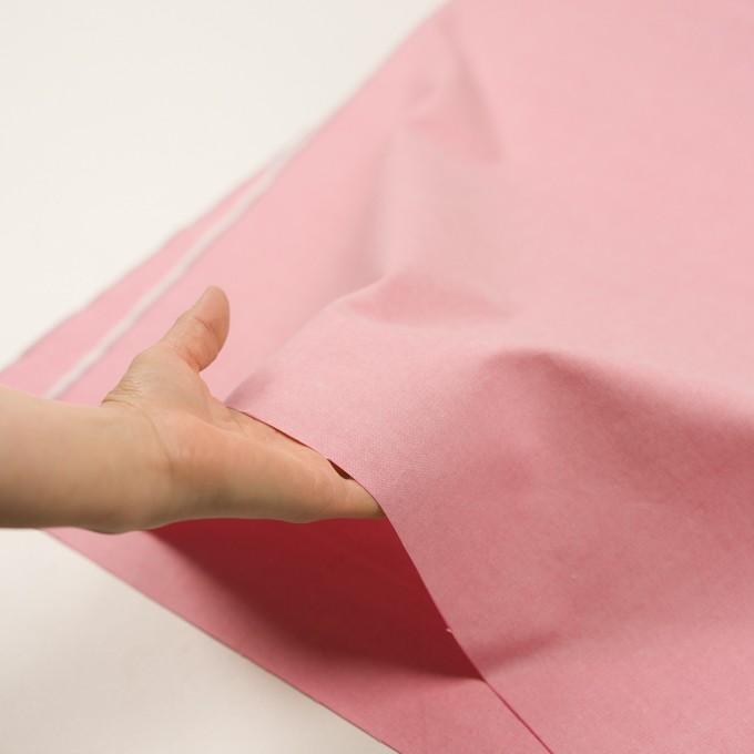 コットン×無地(ピンク)×セルビッチ・オックスフォード イメージ5