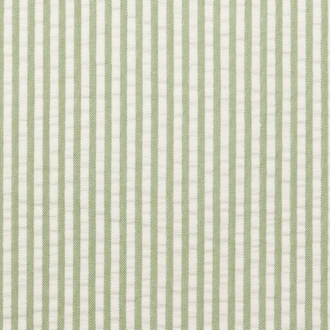 コットン×ストライプ(アイビーグリーン)×サッカー_全3色 イメージ1