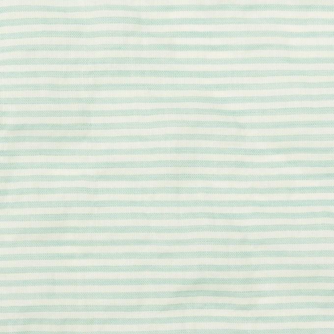 コットン&テンセル混×ボーダー(エメラルドグリーン)×ボイルシャーリング_全2色 イメージ1