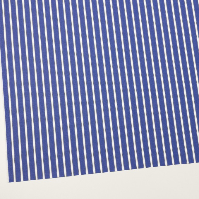 コットン×ストライプ(マリンブルー)×ブロード イメージ2
