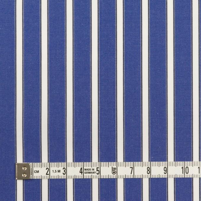 コットン×ストライプ(マリンブルー)×ブロード イメージ4