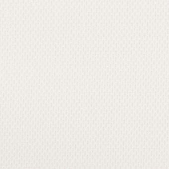 コットン×無地(ホワイト)×ジャガード サムネイル1