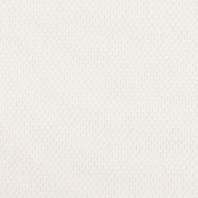 コットン×無地(ホワイト)×ジャガード イメージ1