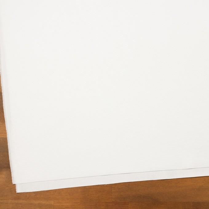 コットン×無地(オフホワイト)×斜子織 イメージ2