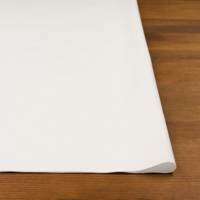 コットン×無地(オフホワイト)×斜子織 イメージ3