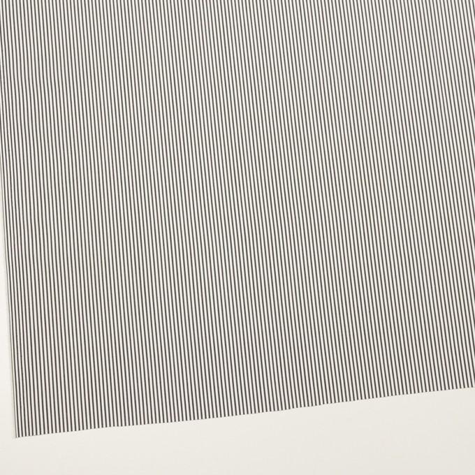 コットン&ポリウレタン×ストライプ(チャコール)×ブロードストレッチ イメージ2