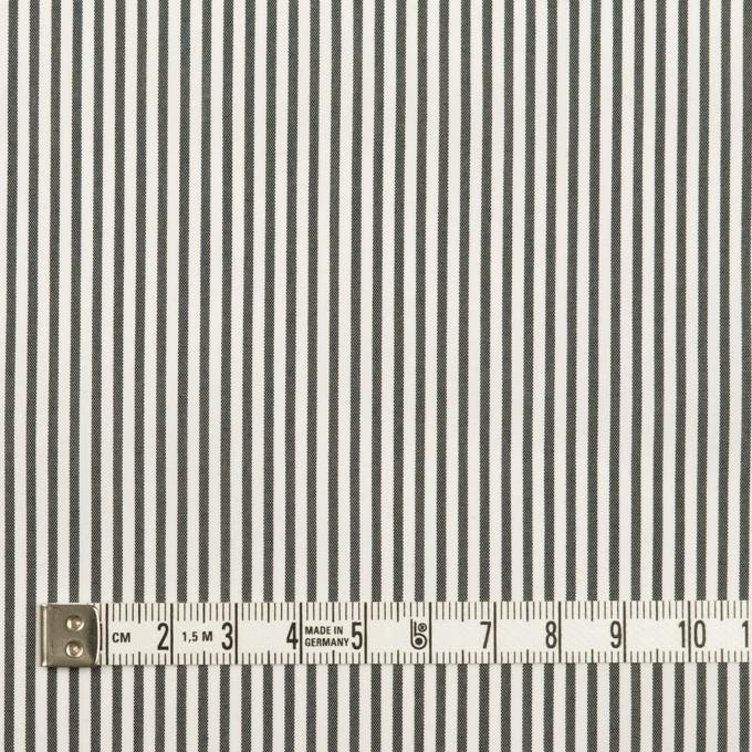 コットン&ポリウレタン×ストライプ(チャコール)×ブロードストレッチ イメージ4