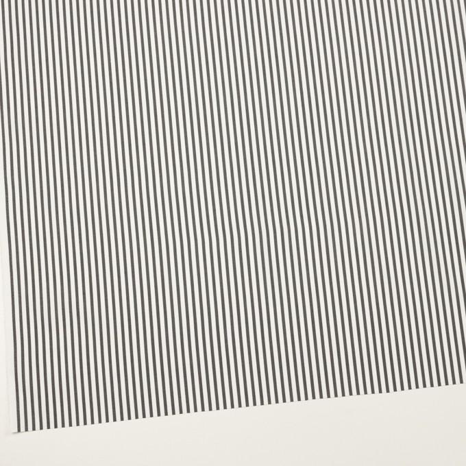 コットン&ポリエステル混×ストライプ(チャコール)×ブロードストレッチ イメージ2