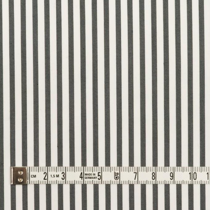 コットン&ポリエステル混×ストライプ(チャコール)×ブロードストレッチ イメージ4